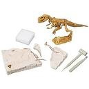 Mind Crafts Boy Scouts of America Paleontology Activity Kit