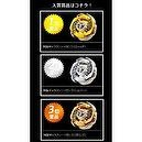 WBBA G3 Champion Set of 3 Galaxy Pegasis W105R2F (Galaxy Pegasus) (Gold, Silver, Bronze) Limited Edition JAPANESE Beyblade Meta