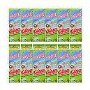 Dip StixTM Giant Bubble Grab & Go Kit Case (12)