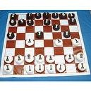 American Educational YTC-237-2 Chess Set with Flat Ball Checkers